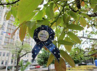 Третий одесский фестиваль «Акация Фест»: праздник нон-стоп