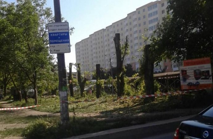 Место для дома или для МАФа? Одесситы бьют тревогу из-за новой вырубки деревьев