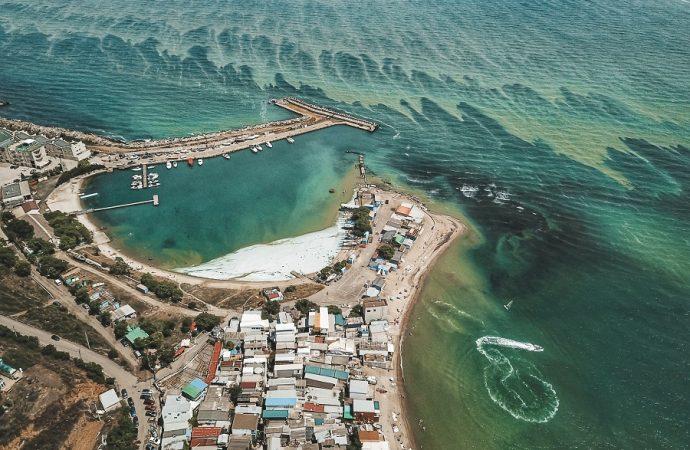"""""""Зелёная напасть"""": так можно ли сейчас купаться в Чёрном море?"""