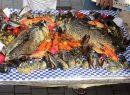 чемпионат рыба-фиш