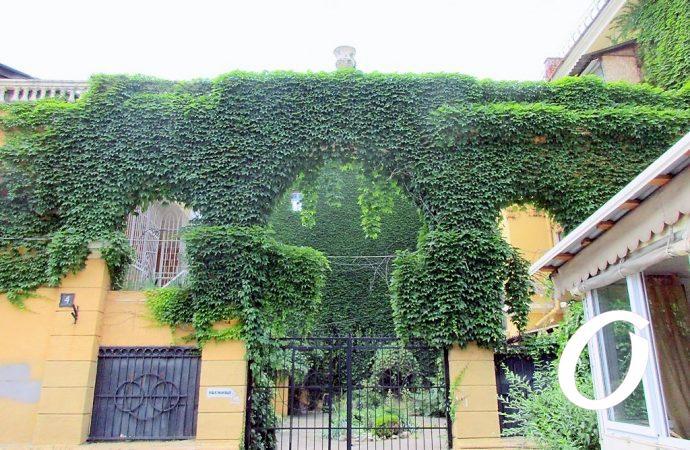 Дом с плющом — еще одна одесская «живая фишка»