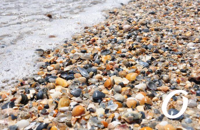 Температура морской воды в Одессе 11 июля: каким будет воскресное море