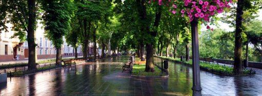 Погода 24 июня. Синоптики обещают дождь