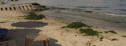 На пляже в Одессе ночью трагически погиб ребенок – что произошло