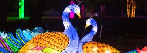 Фестиваль гигантских китайских фонарей приглашает в гости всех социально незащищенных детей
