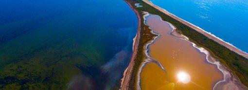 Как на Мальдивах: в Одесской области заповедные озера окрасились в коричневый и розовый оттенки