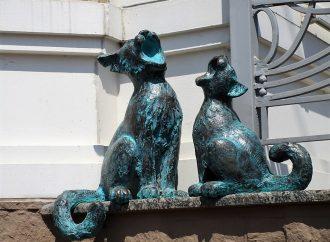 Возле одесского театра Музкомедии поселились поющие коты