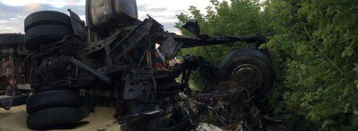 Груда металла и трое погибших: в Одесской области столкнулись зерновозы