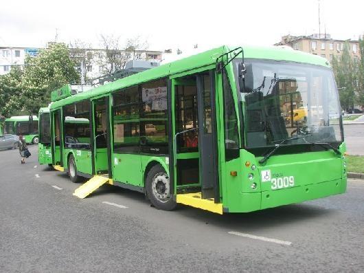 Где в Одессе курсируют автобусы для людей с инвалидностью?