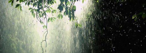 Погода на 23 липня. Синоптики прогнозують зливу