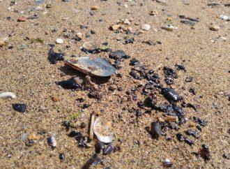 Новые сюрпризы курортного сезона: загородные пляжи Одессы загрязнены мазутом