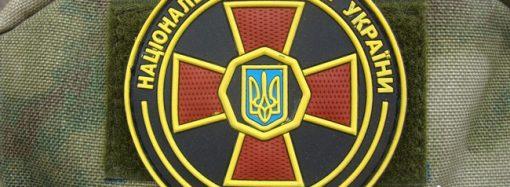 В Одесской области бойцы Нацгвардии поймали насильника