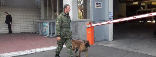 Перед матчем за Суперкубок одесский «Черноморец» проверят взрывотехники