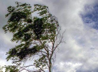 Штормовое предупреждение: в Одесской области будет сильный ветер и чрезвычайная пожароопасность