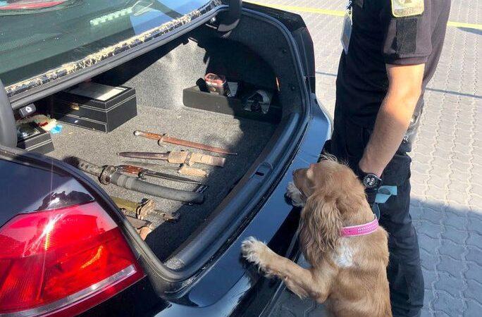 В одесском порту пес-патриот «учуял» коммунистическую символику на американском теплоходе