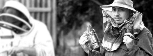 День пасечника: едем в гости к одесским пчеловодам