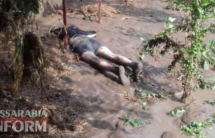 Из-за прорыва дамбы под Одессой мощный поток сели убил мужчину