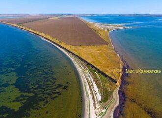 В Одесской области экологи засняли уникальный подводный риф (фото)