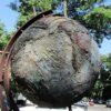 Гуляем по городу в поисках глобуса Одессы