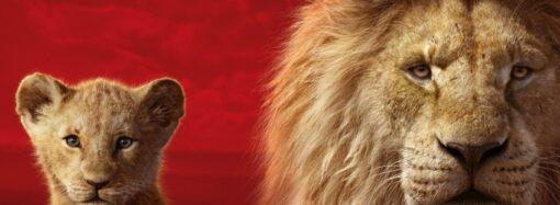 В Одессе мужчина забрался в вольер со львами (видео)