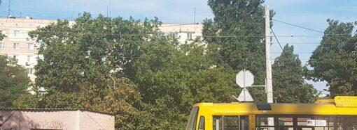 На Люстдорфской дороге в Одессе из-за аварии застряли трамваи (фото)