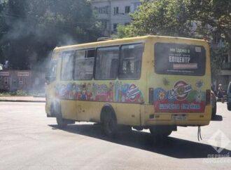 В Одессе пустят дополнительные автобусы для избирателей в день выборов