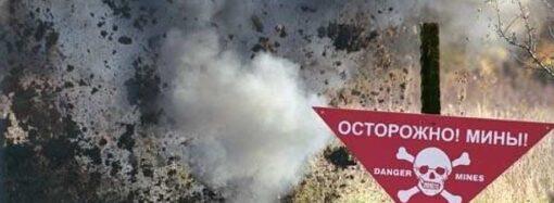 В Одесской области нашли боеприпасы времен Второй мировой войны