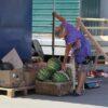 А я несчастная торговка частная: как в Одессе идет уличная торговля