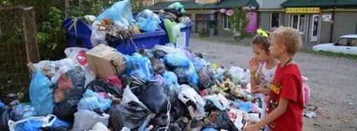 Не вывозят мусор: куда жаловаться одесситам