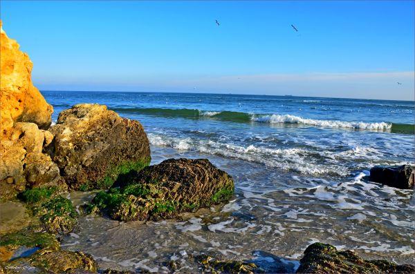 Безопасно ли купаться в Одессе: облздрав проверил пляжи
