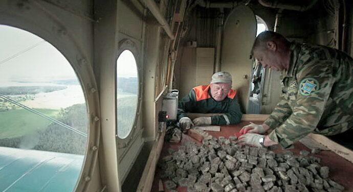 Берегите головы: в Одесской области будут разбрасывать вакцину с самолетов
