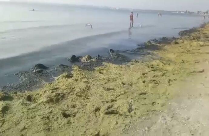 """""""Похоже на зловонную канаву"""": одесситка показала видео с грязного пляжа"""