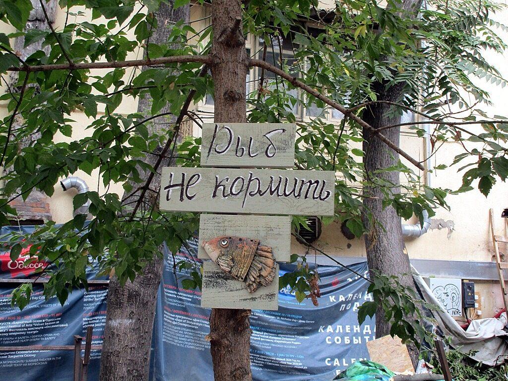 Рядом с прудом появилась табличка, призывающая не кормить рыб