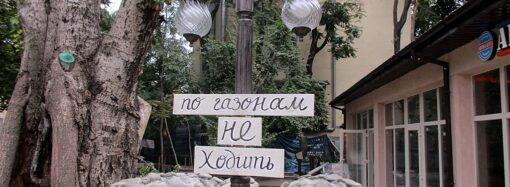 Пруд, галерея и туалет с «комплексом услуг»: как преобразился Летний театр в Одессе