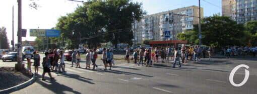 Одесситы уже два года борются с застройкой на улице Глушко: после вырубки деревьев перекрыли дорогу