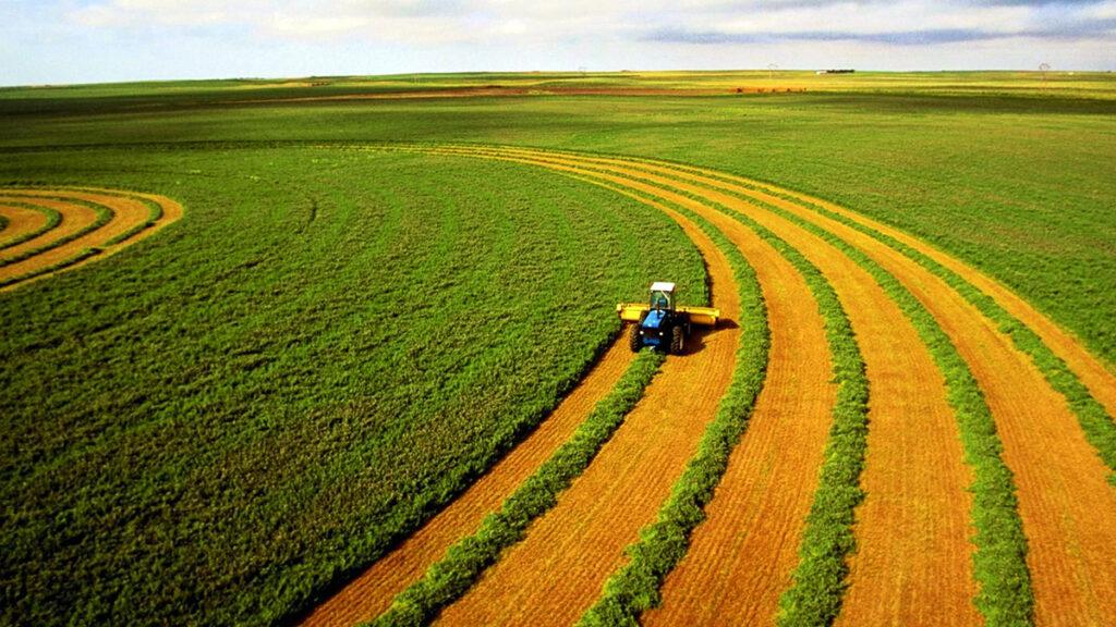 земля сельхоз