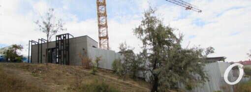 В Одессе застройщик вырубил деревья на Литературной ради здания отдела продаж