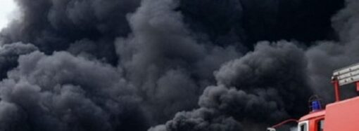 Черный дым до небес: что горело близ порта под Одессой (видео)