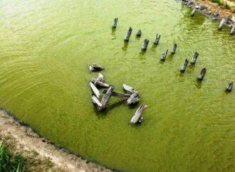 На юге Одесской области высыхают водоемы и разрушаются дамбы: чем это грозит