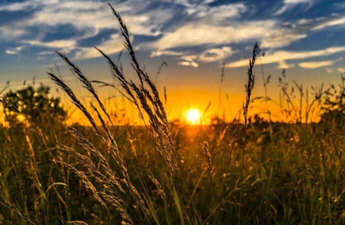 Погода на 12 вересня. В Одесі триває бабине літо
