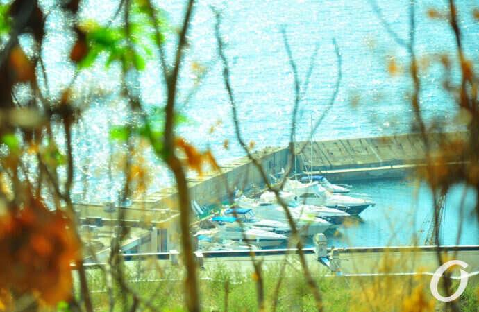Бархатный сезон в Одессе продолжается: погода будет мягкой, а вода в море еще теплая