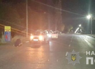 Под Одессой мужчина заплатит штраф за погибшую лошадку