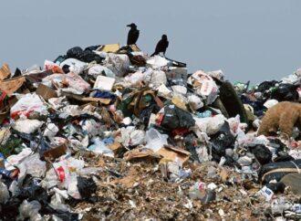 Мусорный вопрос: кто и как теперь будет вывозить отходы в Одессе?