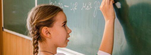 У 2020 році усі державні школи з російською мовою викладання перейдуть на українську