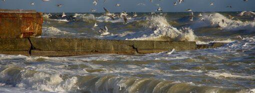 Штормовое предупреждение: на Одессу и область обрушится сильный восточный ветер