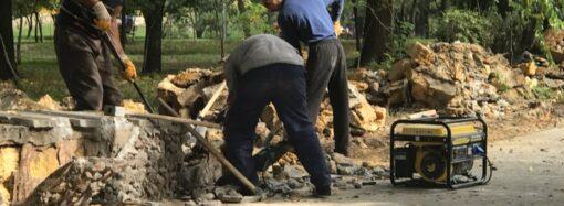 В Одессе обновляют дендропарк Победы (фото)