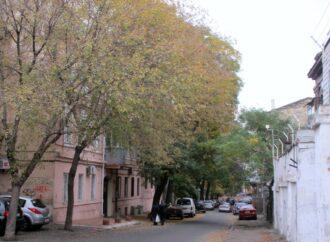 Одесский переулок Ляпунова: без единого указателя, но с «великими вопросами жизни»