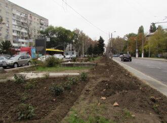 «Зеленый забор», мяч и новые деревья: в Одессе обновляют Адмиральский проспект (фото)