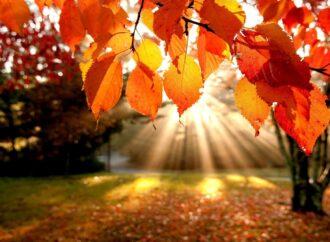 Погода на 9 жовтня. В Одесі буде холодно та сухо