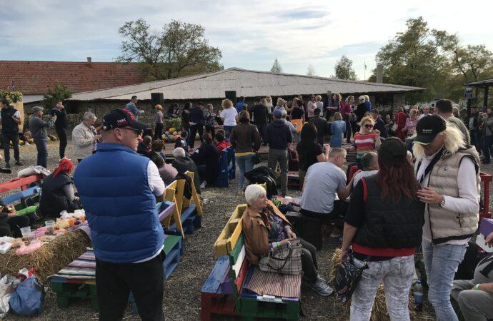Frumushika Wine Fest: как в этноселе на Одесчине возрождают традиции прошлого (фото, видео)